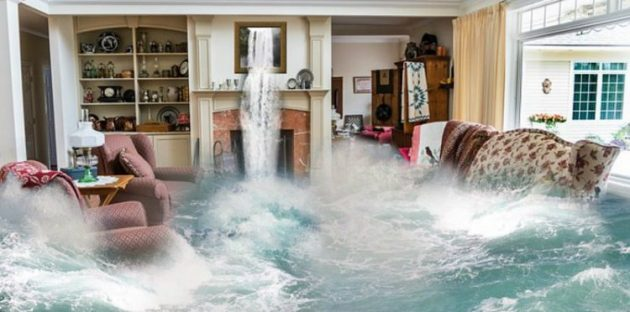 How Can a House Free of Mold and Water Damage Help Your House Value to Rise?
