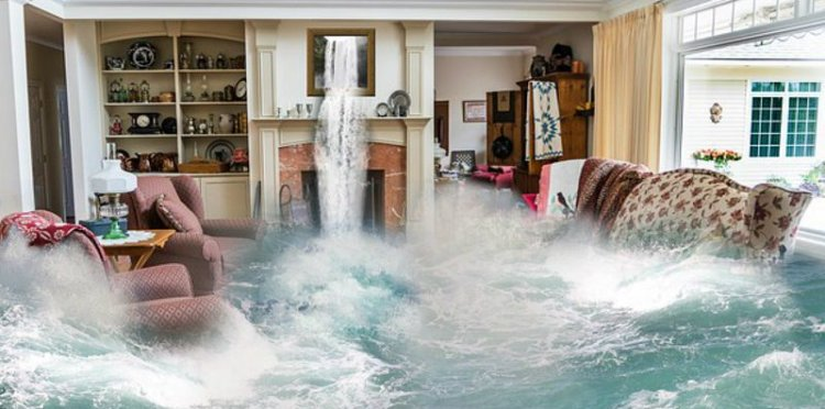 How Can A House Free Of Mold And Water Damage Help Your