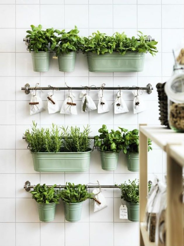 10 Ideas of Home Garden to Get Started Right Now
