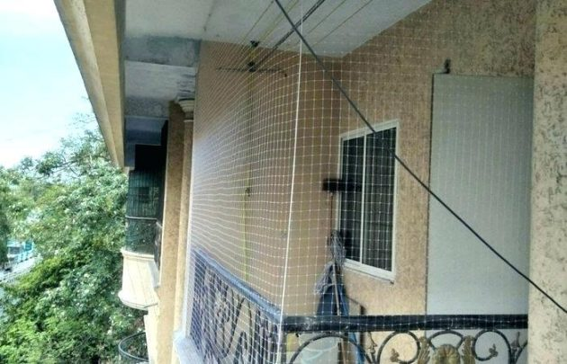 Secure The Balcony Before Buying a Pet