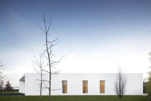 Diamond Tree by 3ndy Studio in Ponzano, Italy