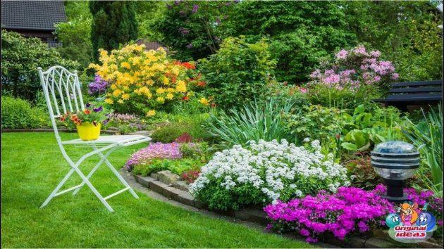Build a Beautiful Backyard on a Budget