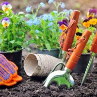 Revive the Outdoor Areas of Your Home in a Few Steps