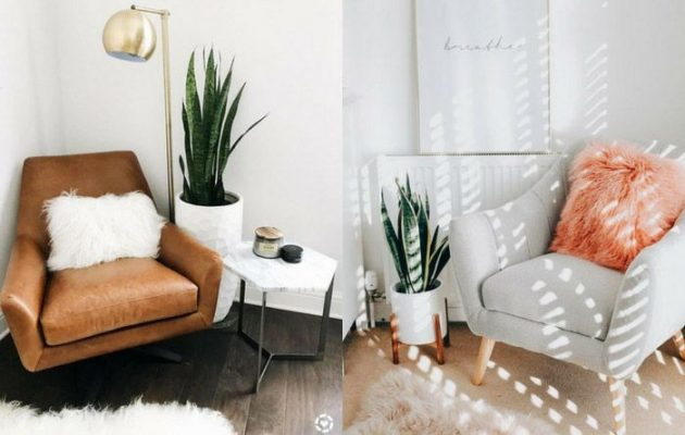 Practical Tips to Make the Living Room Decor Your Own