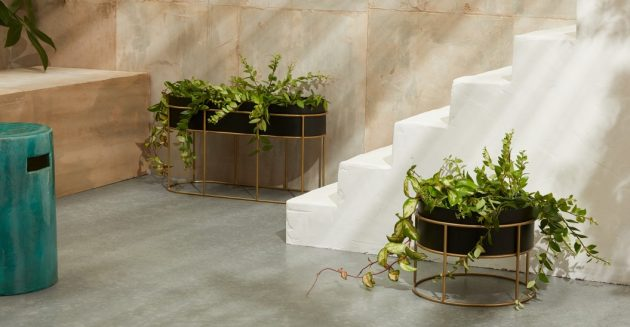 5 Indoor Planters for Your Plants