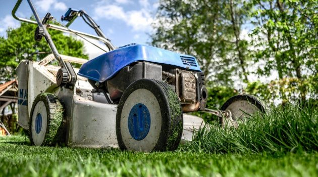 Maintaining and Protecting Your Lawn During Spring Time