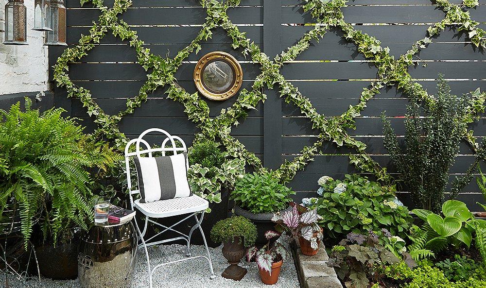 15 Stunning DIY Garden Trellis Ideas That Will Transform Your Outdoor Areas