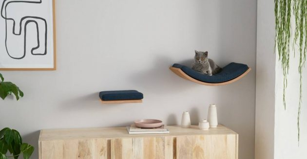 The Best & Coolest Furniture and Accessories for Cats