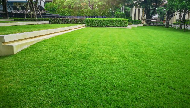 Lawn Care Tips For Creating A Beautifully Sculptured Yard