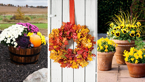 15 Charming DIY Fall Decor Ideas For Your Garden