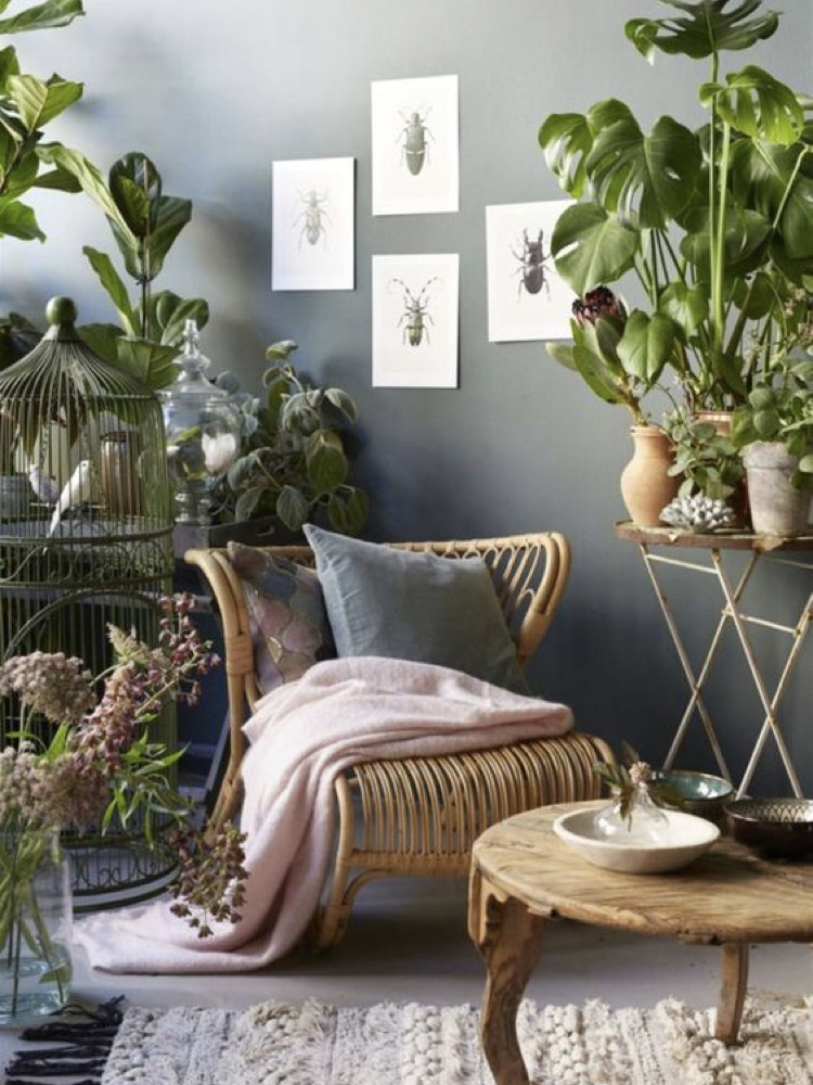 A Living Room In The Chic Nature Style, Nature Themed Living Room Ideas
