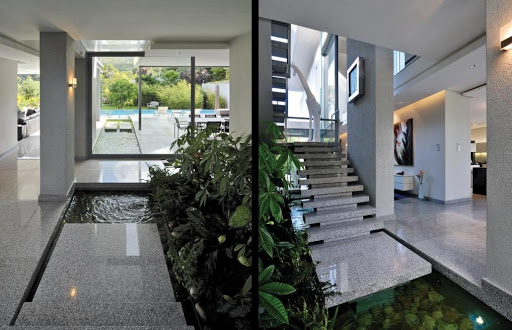 Modern Home Design with Plants