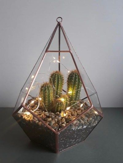 The Most Beautiful Succulent Terrariums For Your Home