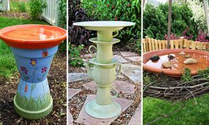 15 Charming DIY Bird Bath Ideas For Your Garden