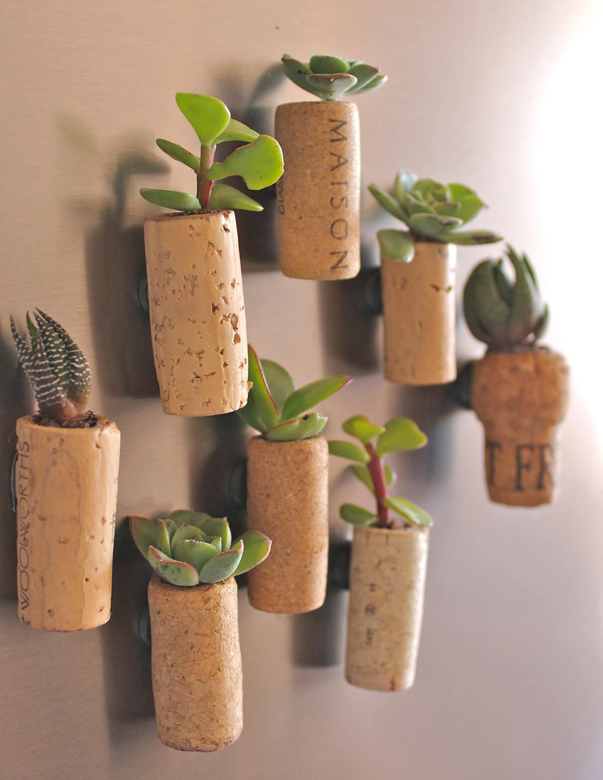 15 Delightful DIY Succulent Planter Ideas For Indoor and Outdoor Use