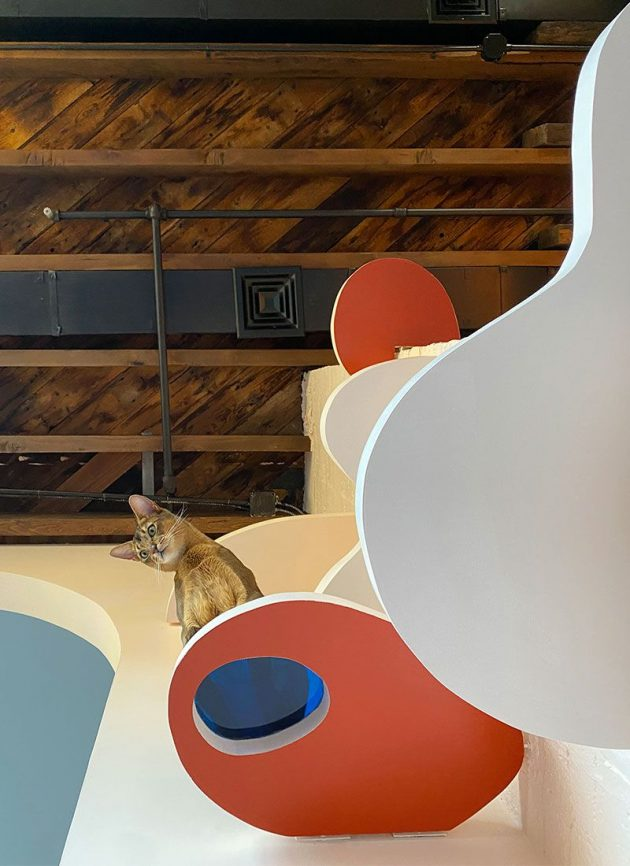 Colors And Arches In A Modern Brooklyn Loft Remodel