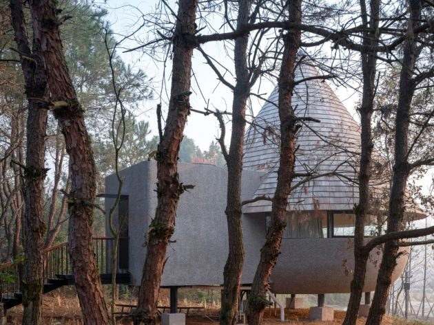 The Mushroom - A wood house in a pine forest designed by ZJJZ