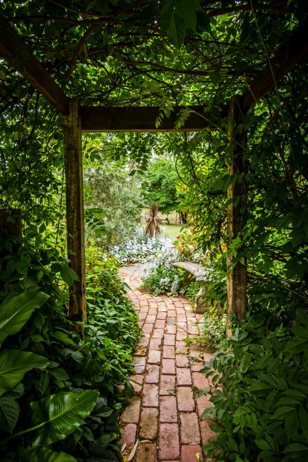 5 Things to Consider When Designing Your Dream Garden