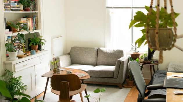Feng Shui 101 Without Going Overboard – Mirrors, Pants & More