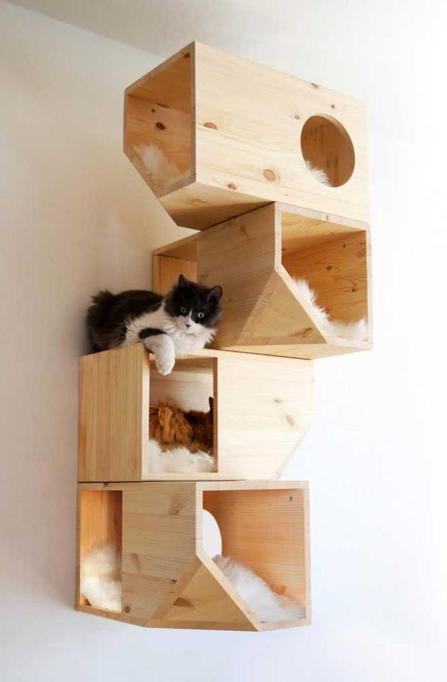 The Cutest Cat Houses For Your Inspiration