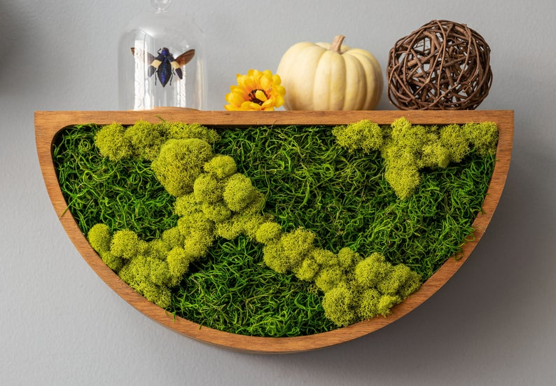 18 Soothing Moss Wall Décor Designs You Won't Be Able To Resist