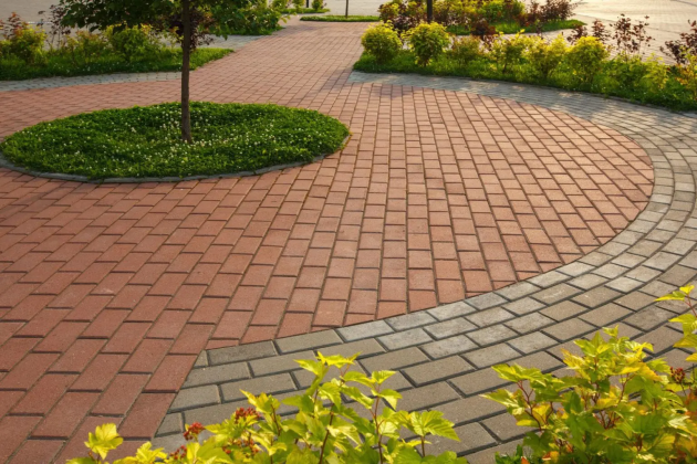 A Landscaper's Guide for Best Looking Trees for Gardening