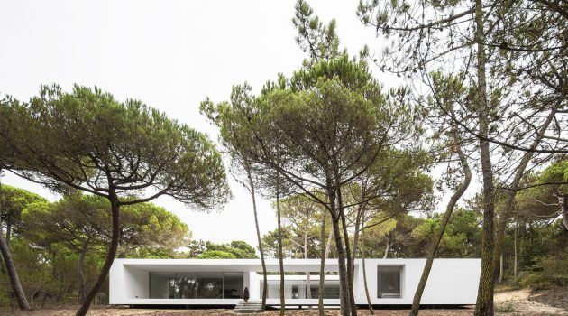 Residence in Colares by Frederico Valassina Arquitectos in Portugal